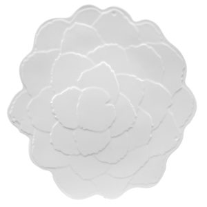 Botanical Galax Dinner Plate-WH